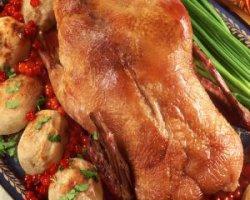 Какое мясо полезнее – утиное или куриное?